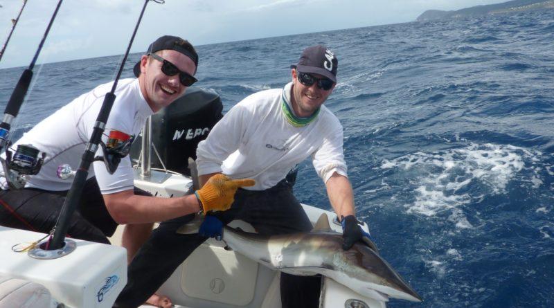 Requin Pêche en Guadeloupe