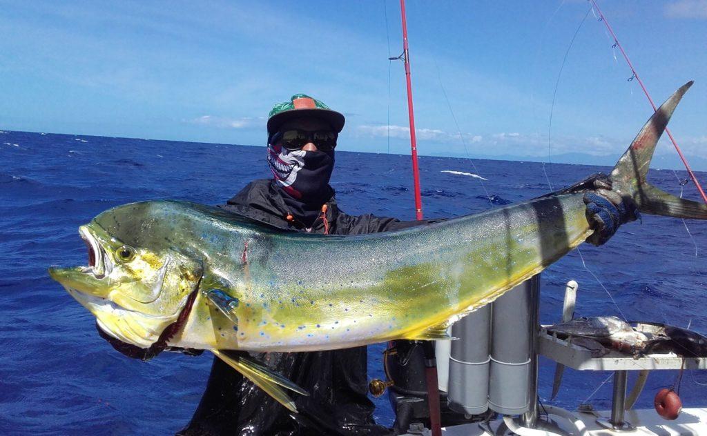 Pêche de la Dorade Coryphène en Guadeloupe