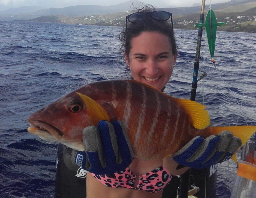 Pêche du Pagre jaune en Guadeloupe