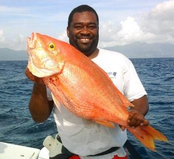 Pêche du Pagre vivaneau en Guadeloupe